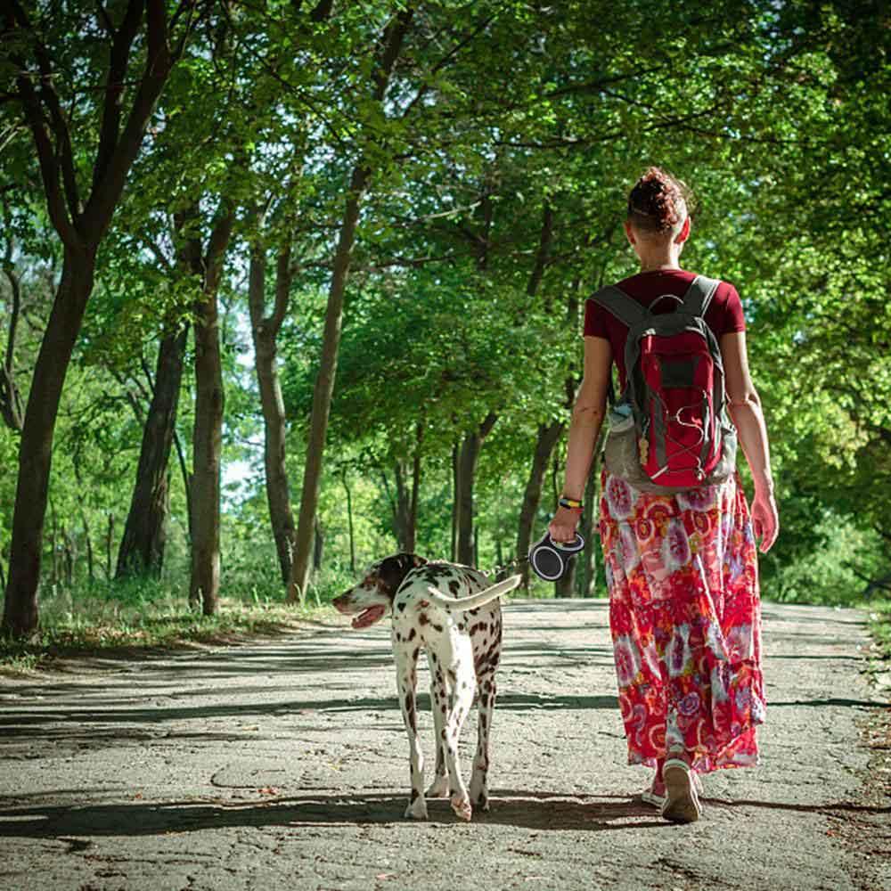 retractable dog leash gray 3 150x150 crop center c63d52d0 dbde 41a5 a4f5 f7125c645f89 1